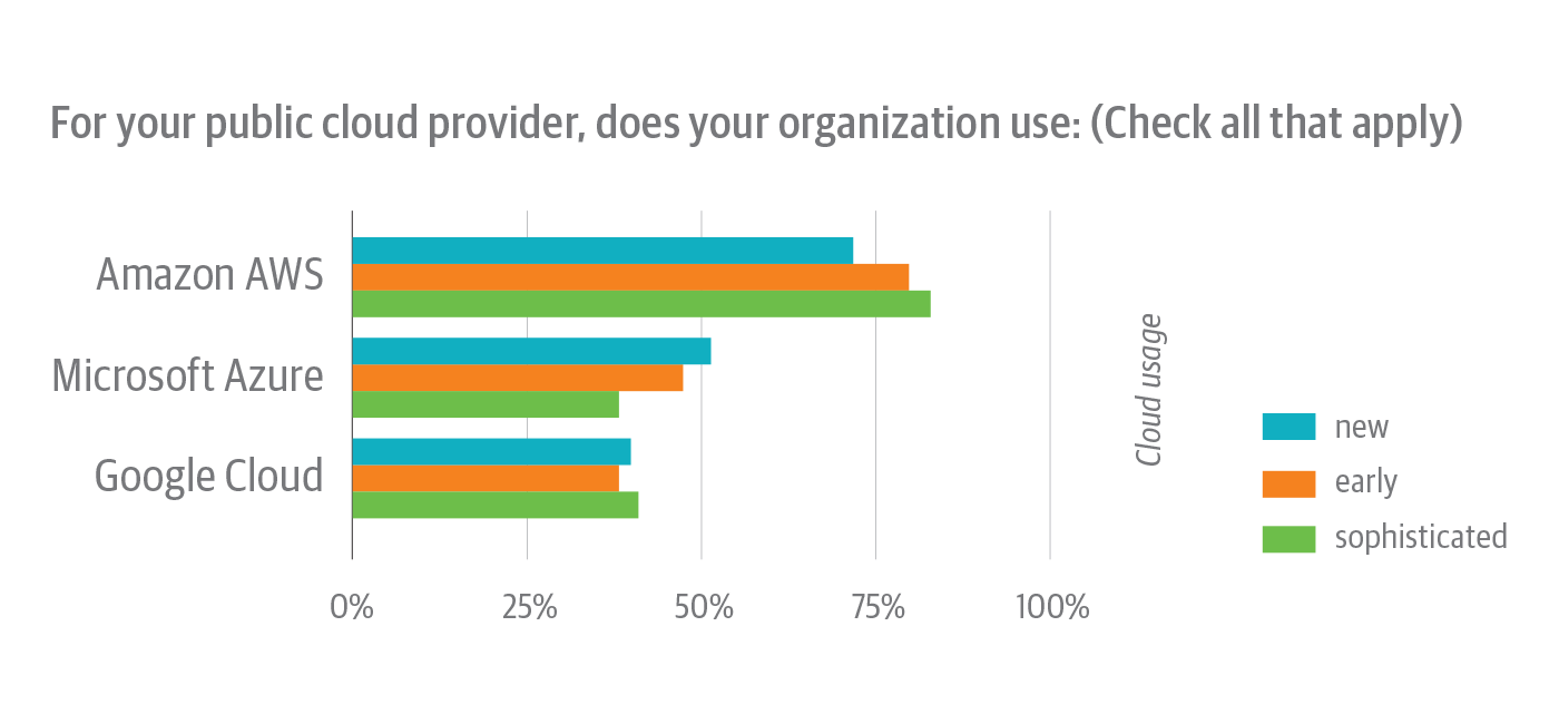 Public cloud providers used by survey respondents, broken down by cloud native experience level