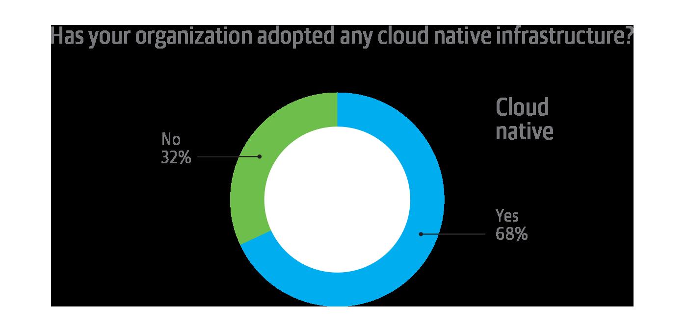 Cloud native infrastructure adoption among survey respondent