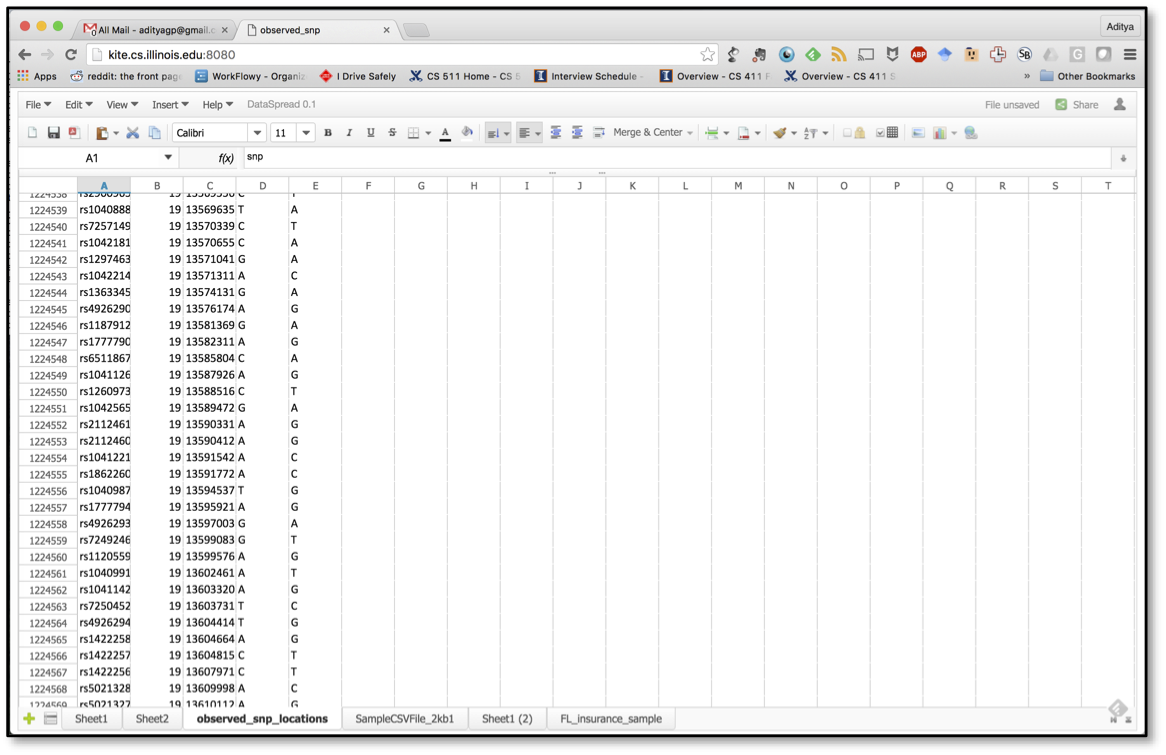 DataSpread screenshot