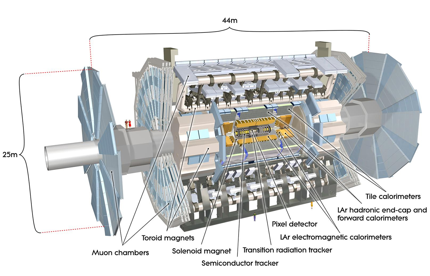ATLAS Detector at the LHC