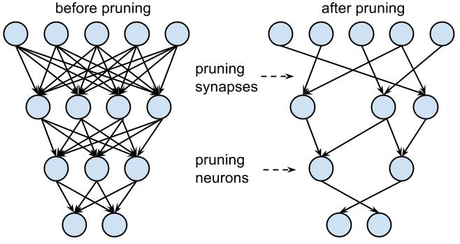 Pruning a neural network