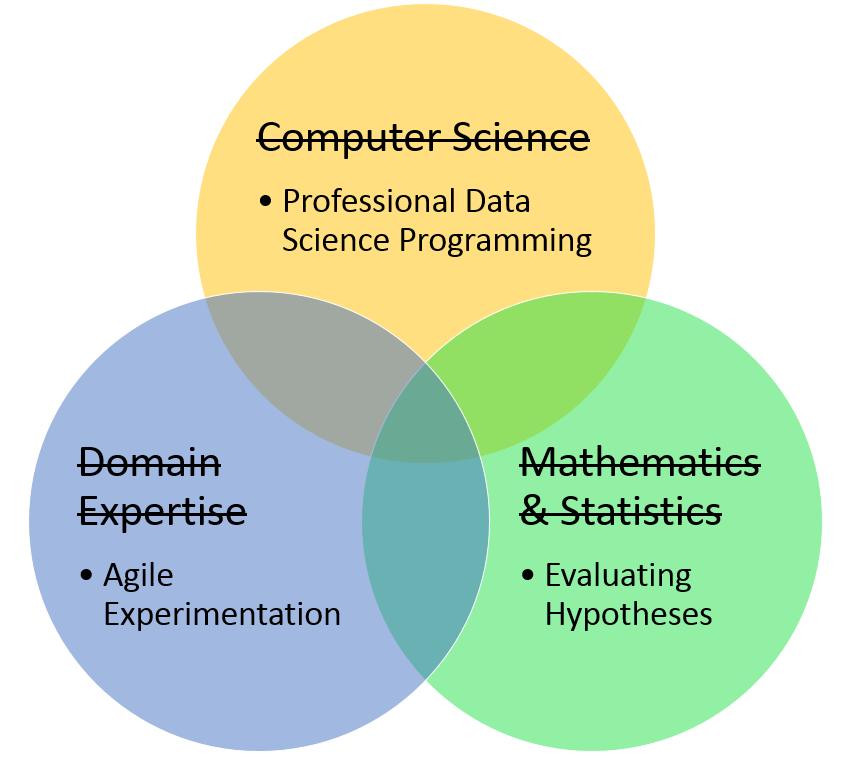 pragmatic view of the required data science skills