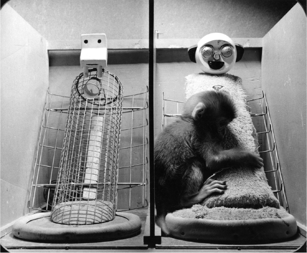 Baby monkeys preferred soft, cloth covered surrogate mothers to those with only wire and wood, even when the soft mothers offered no food