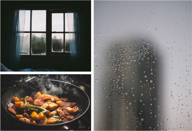 Think about the way your senses work throughout the day. Sunlight can wake you. The smell of cooking can remind you how hungry you are. The sound of rain can delight or disappoint, depending on your plans.