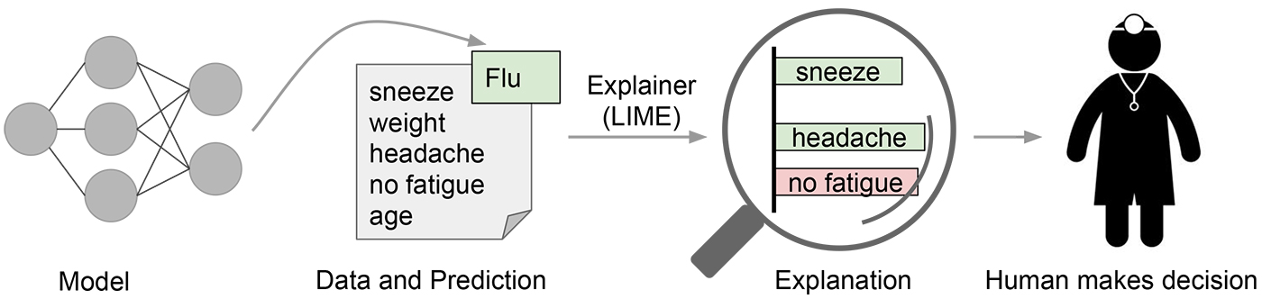 KDnuggets Introduction to Local Interpretable Model-Agnostic Explanations (LIME)